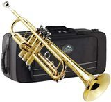 Eastrock Gold Trumpet Brass Standard Bb Trumpet Set for Beginners