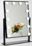 Ebern Designs Gagny Lighted Makeup Mirror